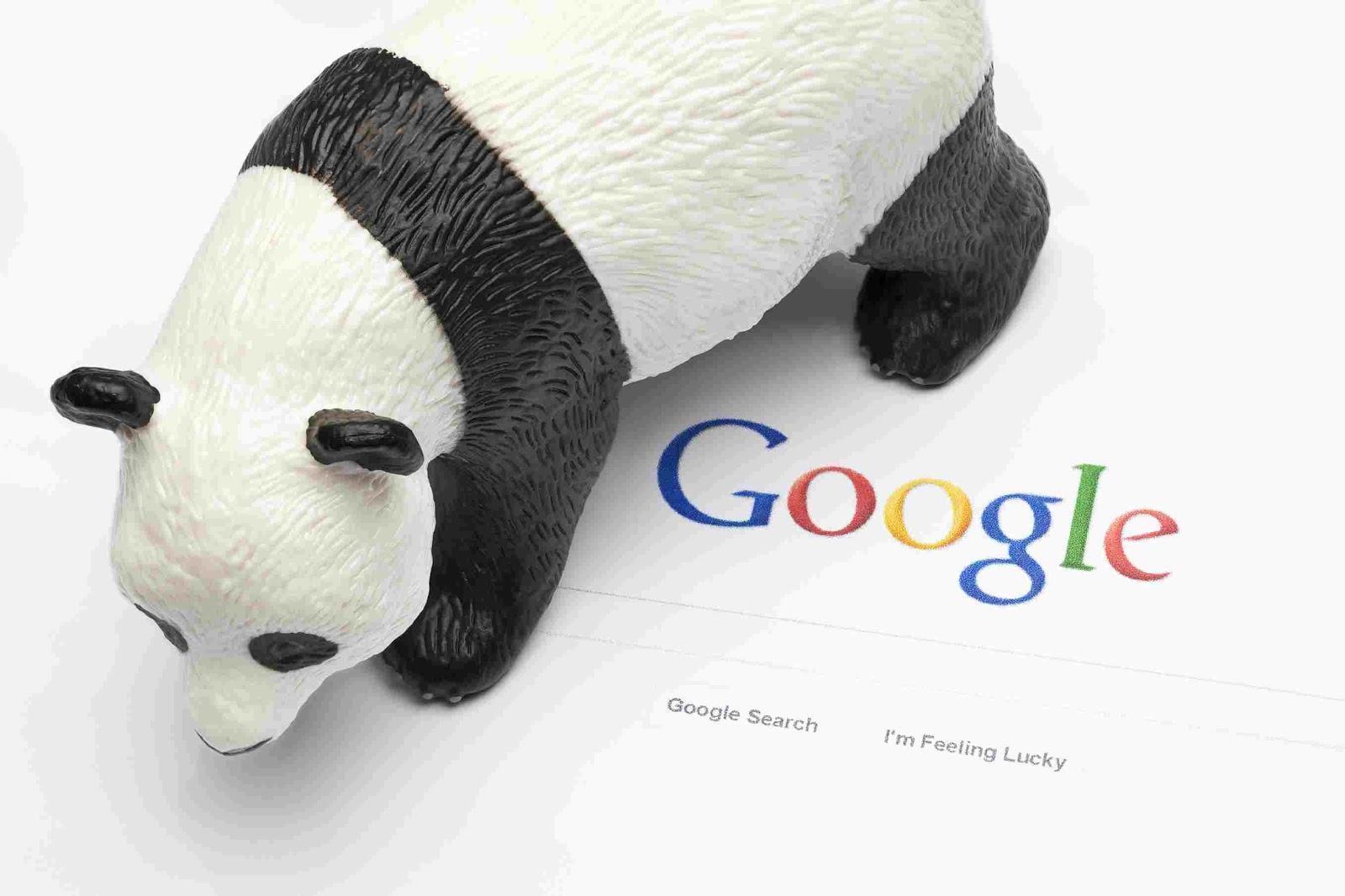 Aggiornamenti algoritmi google
